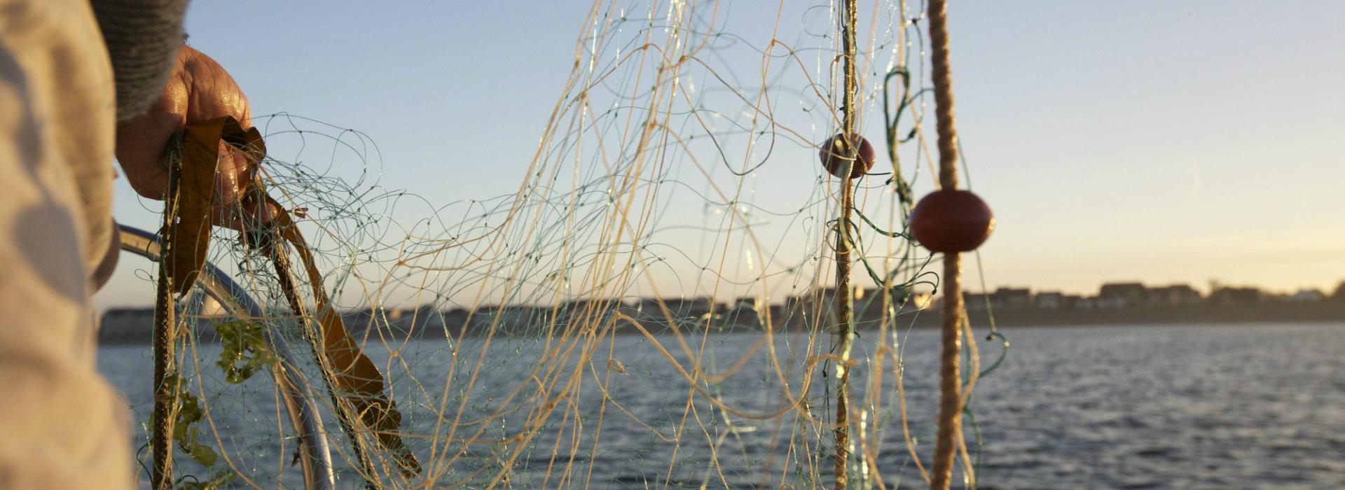 Découvrir le monde de la mer & de la pêche à La Turballe