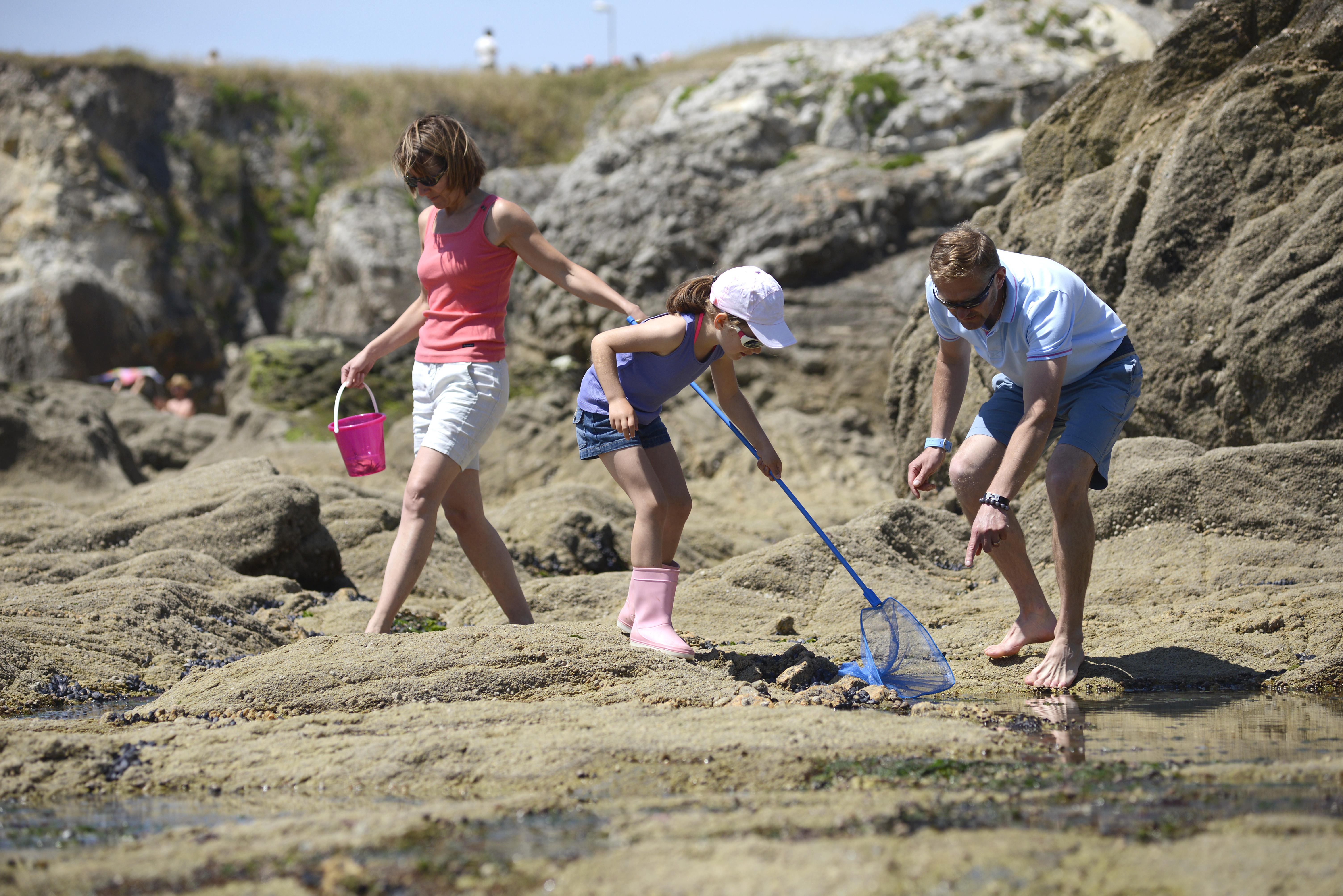 Découvrir les richesses du littoral en s'amusant !