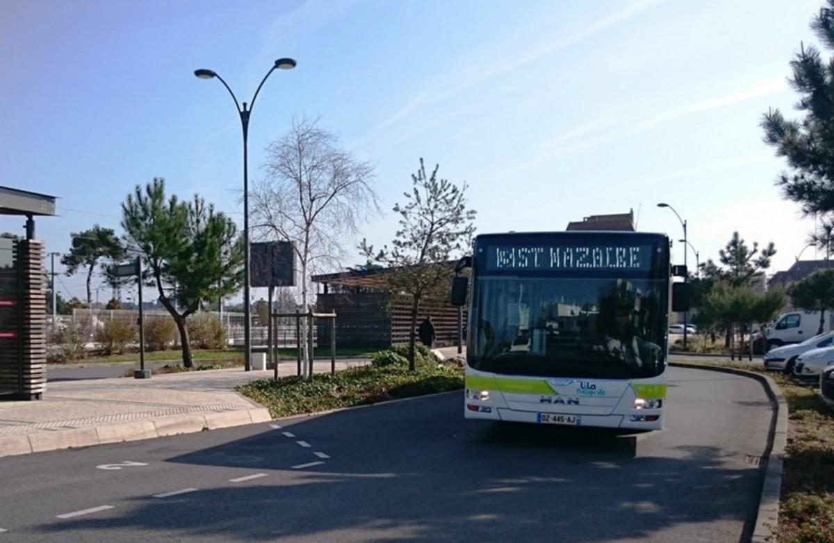 Busse und Shuttles