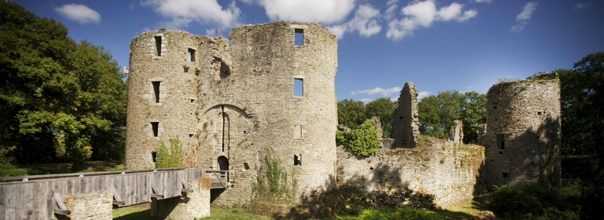 Château de Ranrouët à Herbignac - Teddy Locquard