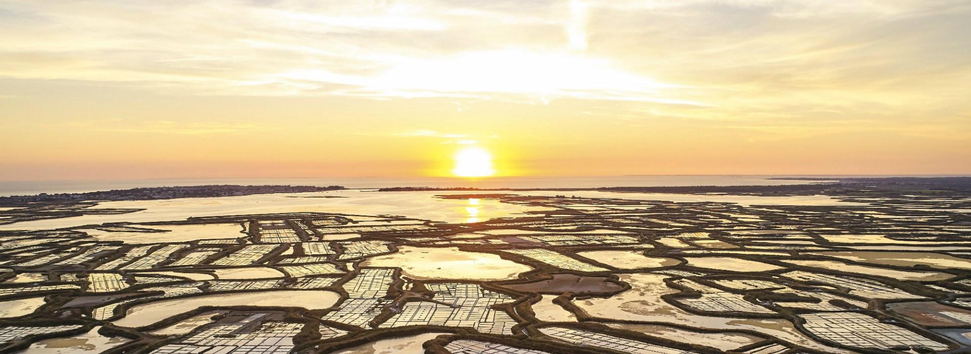 Coucher de soleil sur les marais salants de Guérande - Alexandre Lamoureux