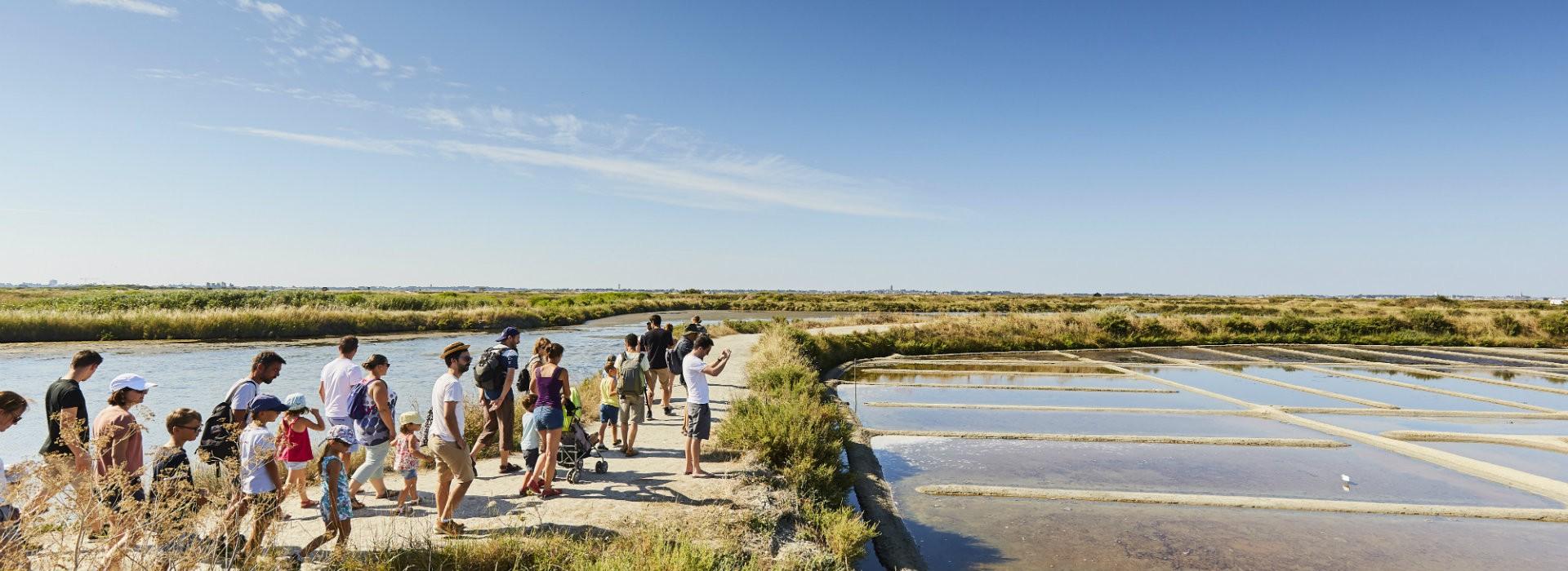 Groupes & Scolaires - Visite des marais salants - Alexandre Lamoureux