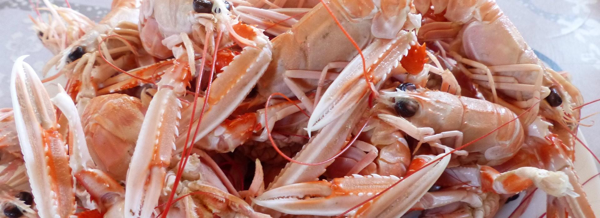 Restaurants et produits du terroir à Mesquer-Quimiac - OT La Baule Presqu'île de Guérande
