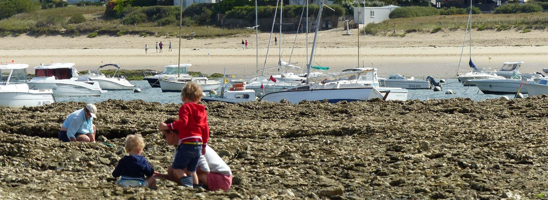 A voir, à faire à Mesquer-Quimiac - OT La Baule Presqu'île de Guérande