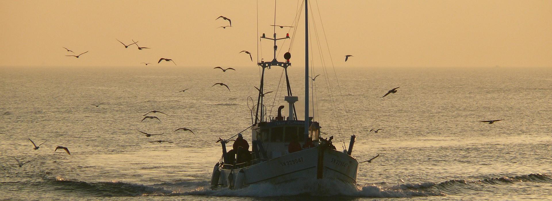 Pêche en mer au départ de la Turballe - Bruno Schoch