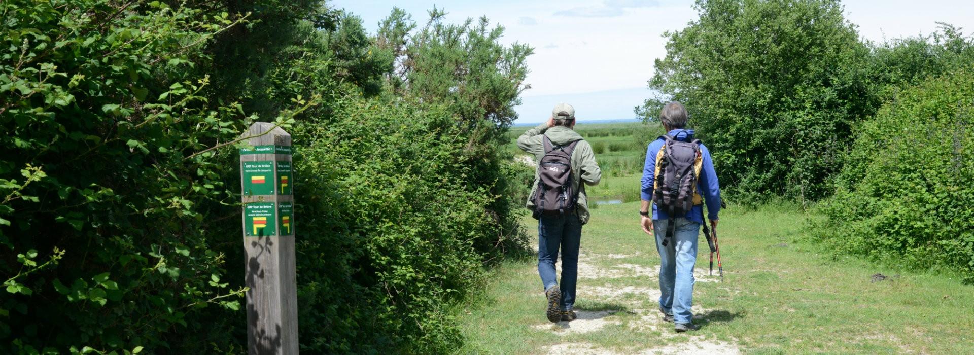 Randonnée sur le GRP® Tour de Brière