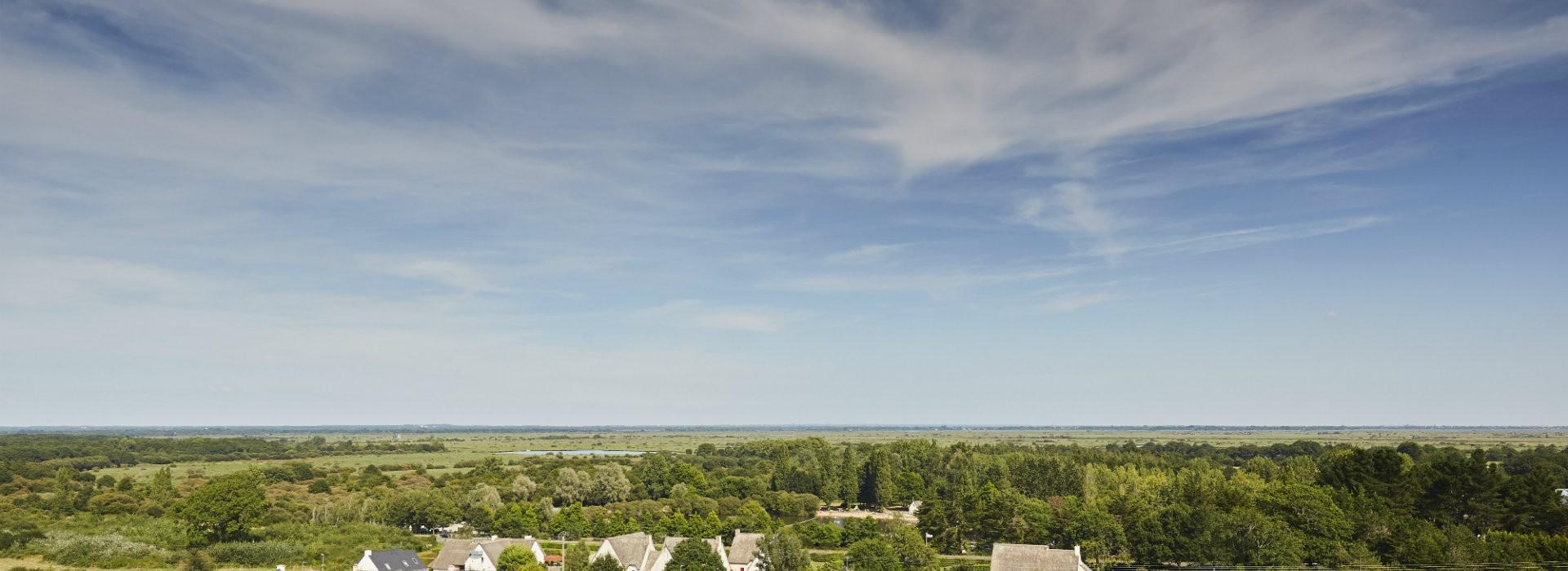 La Brière vue depuis le cocher de Saint-Lyphard - Alexandre Lamoureux