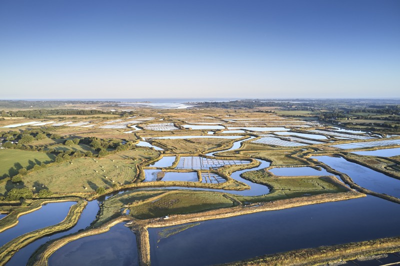 140 hectares de marais salants : le bassin du Mès saint-molf