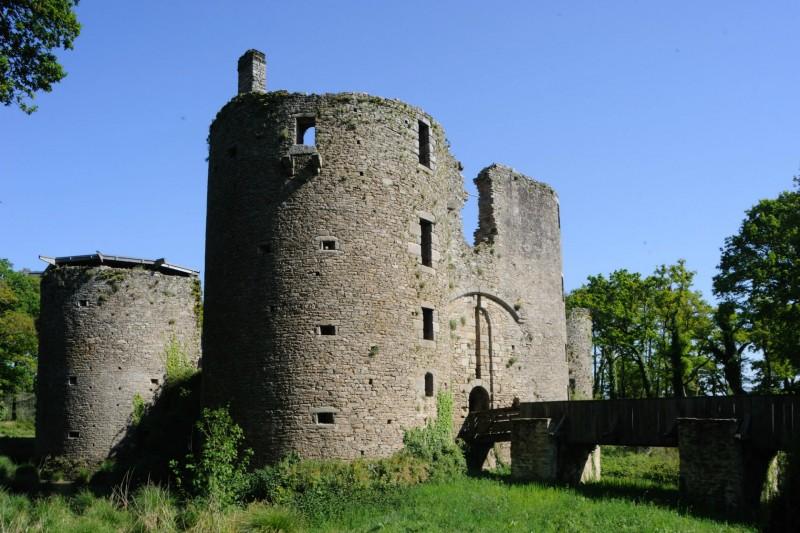 Château de Ranrouët - Cap Atlantique