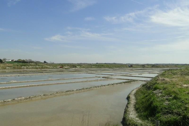 Les marais salants du Mès à Saint-Molf - Cap Atlantique