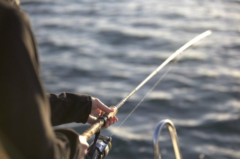 Pêche en mer - Teddy Locquard