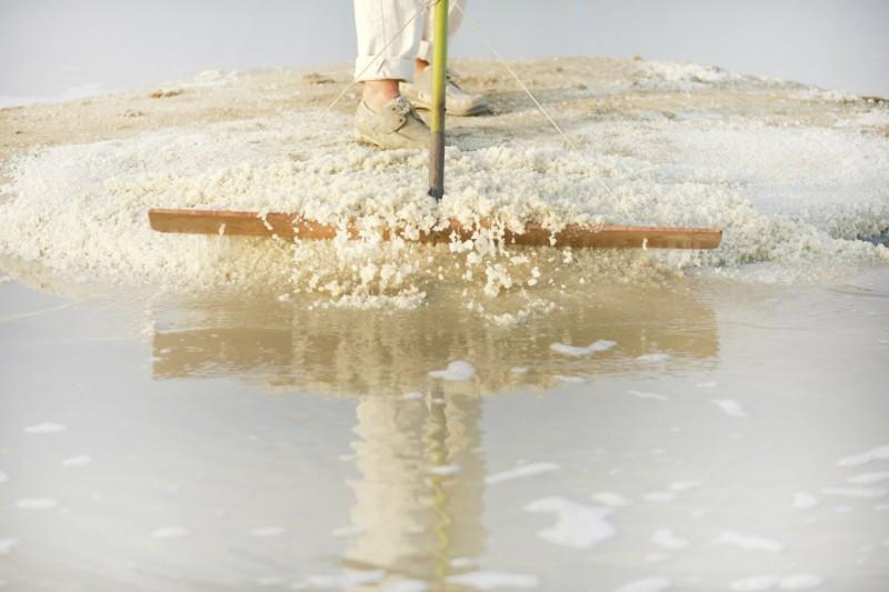 Récolte du sel dans les marais salants de Guérande - Teddy Locquard
