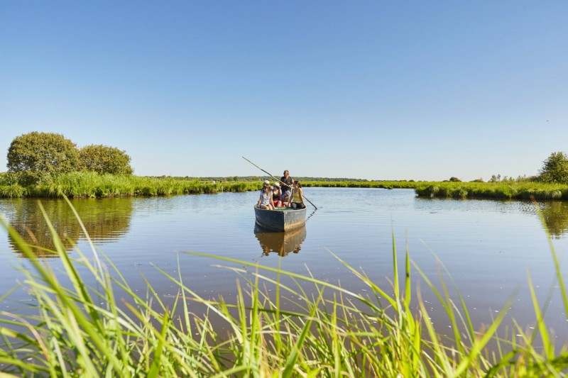 Promenade en barque dans le marais de Brière - Alexandre Lamoureux