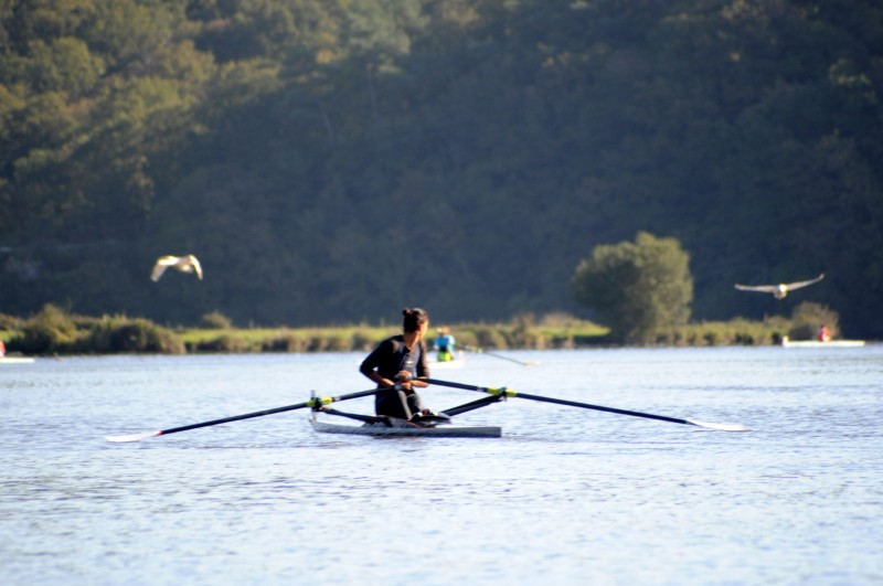 Balade en aviron sur la Vilaine