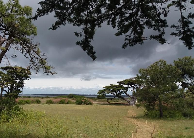 dune-de-la-falaise-panorama2-juliette-martin-716