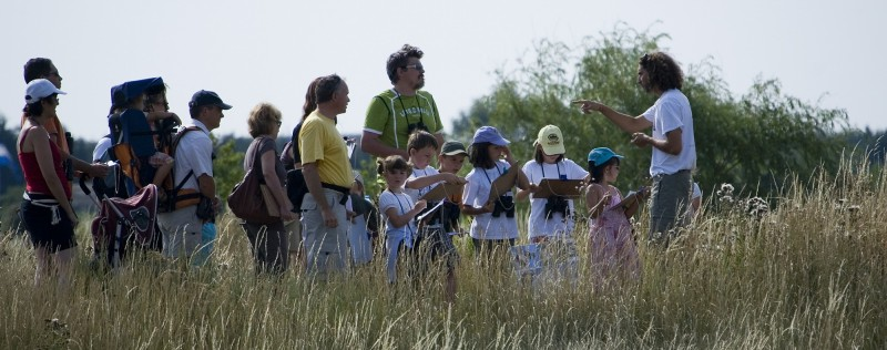 Groupes Maternelles - Bretagne Plein Sud