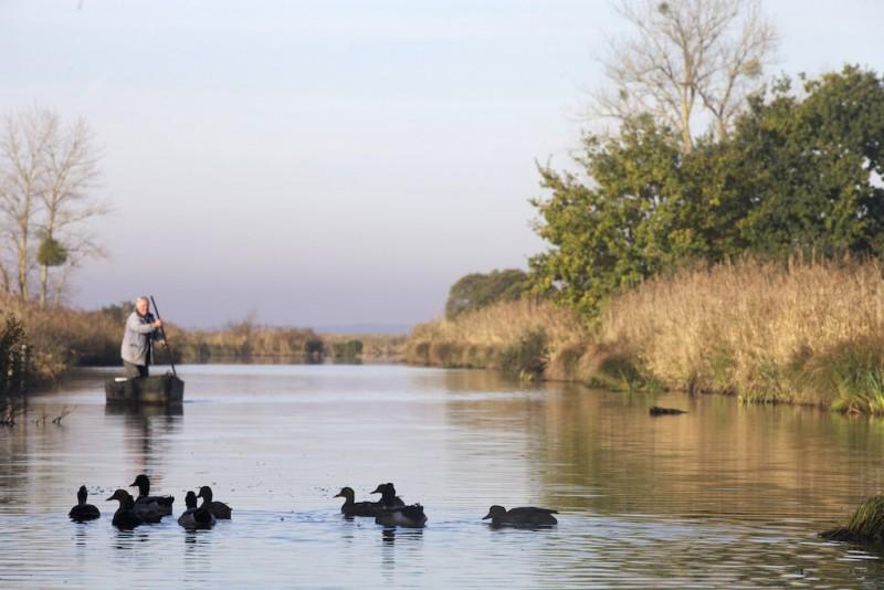 Le Parc naturel régional de Brière - Fédrun