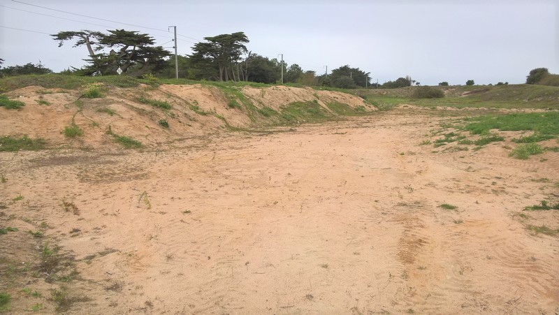 Les dépressions humides - Dune de la Falaise