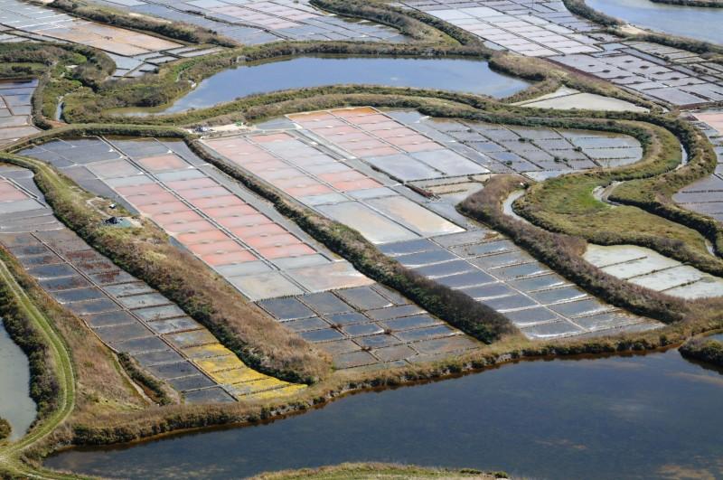 Les marais salants de Guérande - Bretagne plein Sud