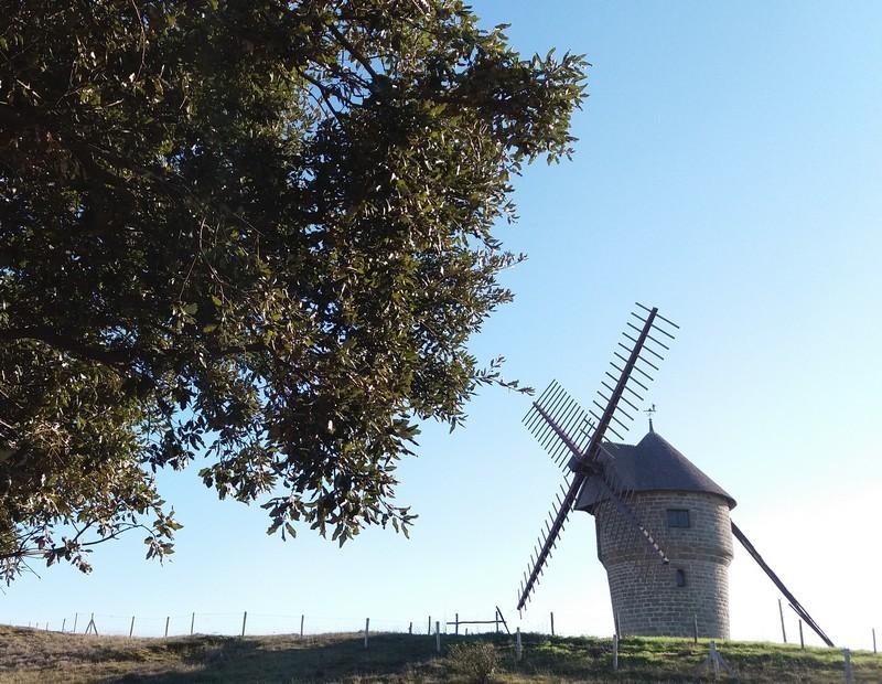 moulin-de-la-falaise-718