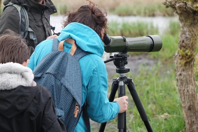 Observation à la longue vue dans le marais de Brière