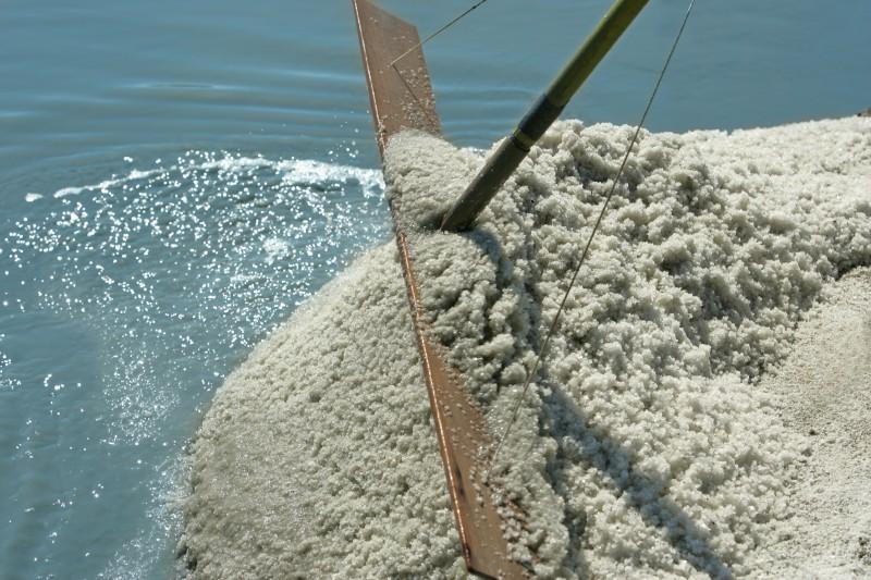 Récolte du sel de Guérande - Les salines de Guérande