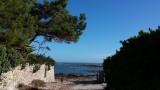 Accès plage - Piriac sur Mer