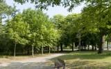 Bois du Pouliguen