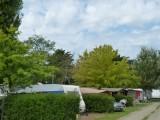 camping-municipal-le-pouliguen-les-mouettes-allee-caravane