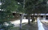Centre équestre et poney club du Bel Air -  Mesquer Quimiac - Le centre