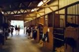 Centre équestre Les Ecuries de Kerdando à Guérande - Box