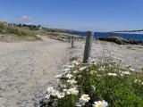 Circuit le tour de côte, le Croisic sentier côtier