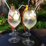Cocktail Gin Tonic le Comptoir Pub Brière