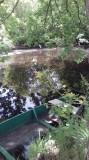 Crêperie le Pays Noir les fossés blancs heron-bioreau