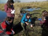 Découverte et analyse des marais Site de Rozé Brière