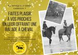 Idée de cadeau de Noël au Manège des Platanes à La Baule