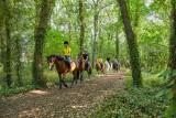 La Baule les pins - Forêt d'Escoublac - équitation