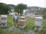 la roche bernard maison de l'abeille