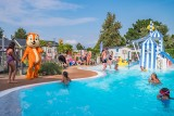 La Roseraie - Camping - La Baule  - piscine