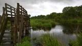 Le marais de Brière - Passerelle de Tréhé