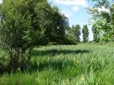 le-pic-vert-3-1548744