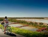 Les marais salants à vélo
