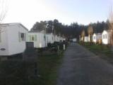 Mesquer Quimiac - Camping Le Prad'Heol - Allée mobil-homes