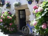Ruelles_Piriac-sur-Mer