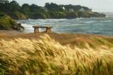Sentier côtier_Sentier des douaniers_GR®34_Piriac-sur-mer