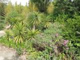 Tropicarium - Jardin exotique - La Baule