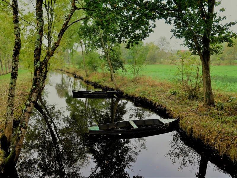 La chalandière et le Brivet - Canal de la Chaussée