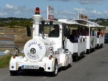 01 - Petit Train Touristique de La Turballe