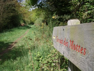 Circuit les mottes, la Baule / Saint-André-des-Eaux: sentier les mottes
