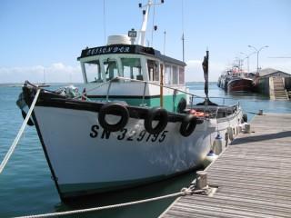 La Toison d'Or, bateau promenade amarré au Croisic